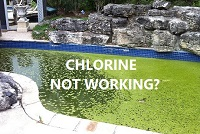 Why is my chlorine not working