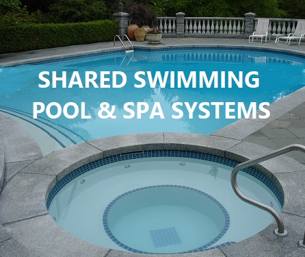 Shared pool and spa systems