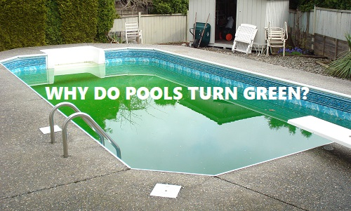 Why do pools turn green?