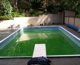 vinyl pool liner before replacment