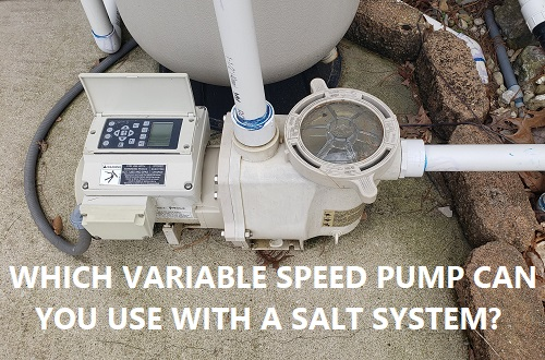 Variable speed pool pump with a salt system